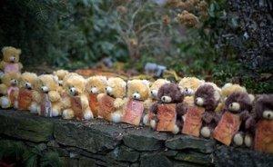 Des ours en peluche représentant chacun une victime de la fusillade de l'école primaire de Sandy Hook, installés sur un mémorial près du lieu du drame, (dimanche 16 décembre 2012, Newtown, Connecticut (AP Photo/David Goldman)