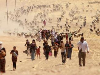Exode de réfugiés yazidies fuyant le nord de l'Irak pour échapper au nettoyage ethnique et crimes de guerre commis par l'EI. REUTERS/Rodi Said.